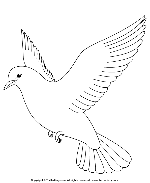 Dove Coloring Page on Fifth Grade Science Lessons