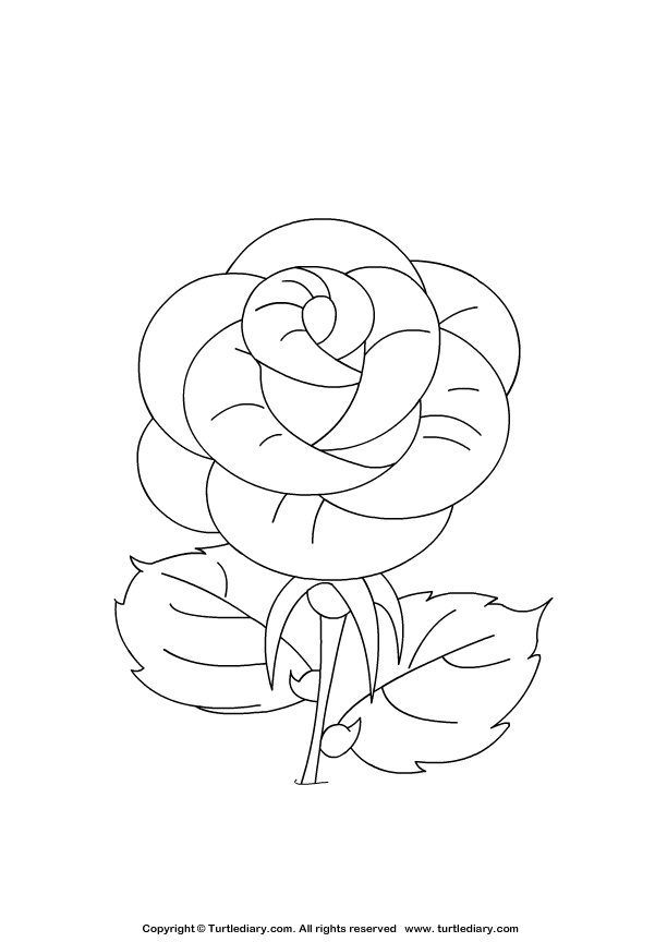 rose art coloring pages - photo#48