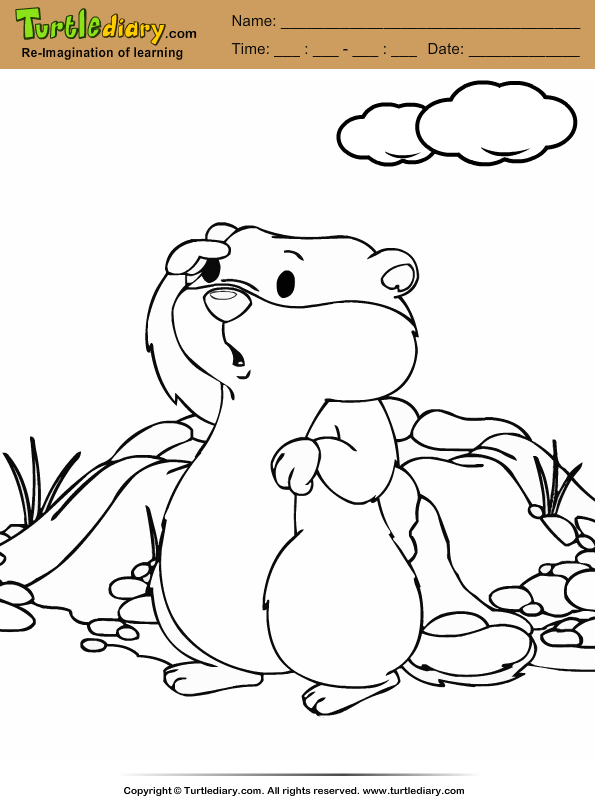 Groundhog Coloring