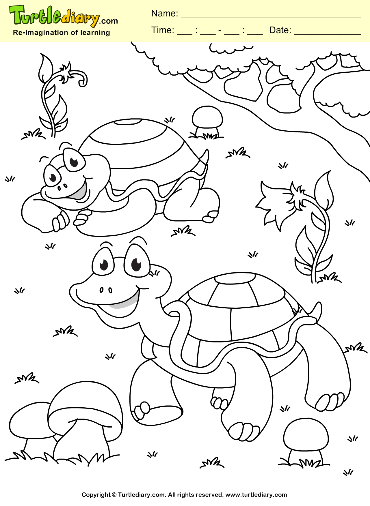 Turtle Coloring Sheet Turtle