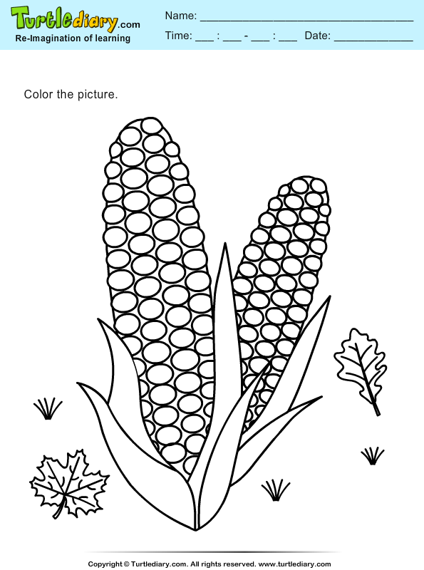 Color Corns