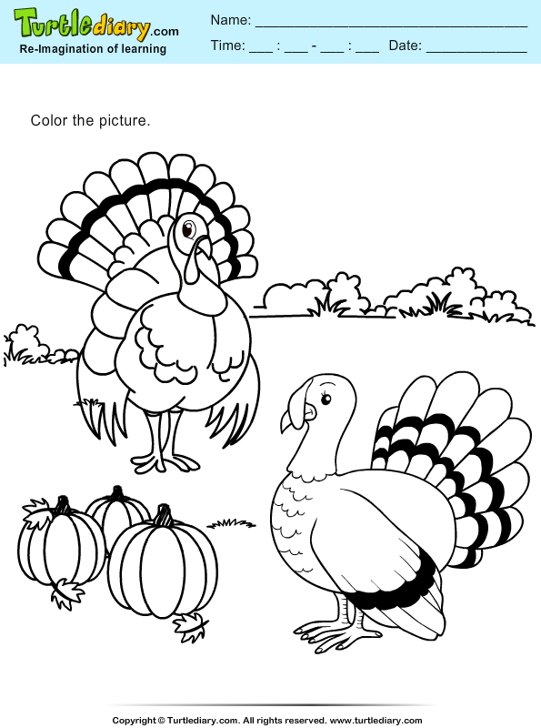 Thanksgiving Coloring Turkeys