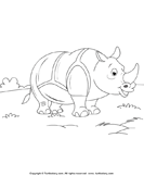 Color a Rhinoceros