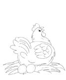 birds - Preschool