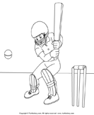Color the Cricketer