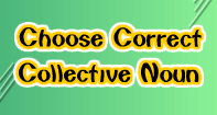 Choose Correct Collective Noun - Noun - Third Grade