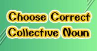 Choose Correct Collective Noun - Reading - Third Grade