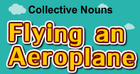 Collective Nouns-Flying an Aeroplane - Noun - Third Grade