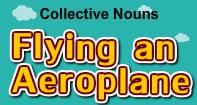 Collective Nouns-Flying an Aeroplane - Noun - Third Grade