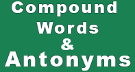 Compound Words And Antonyms - Antonyms and Synonyms - Kindergarten
