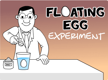 Floating Egg Experiment