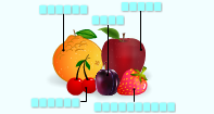 Fruits Labeling  - Picture Games - Kindergarten