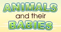 Animals and their Babies - Animals - Kindergarten