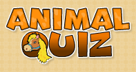 Animal Quiz - Fun Games - First Grade