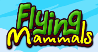 Flying Mammals - Animals - First Grade