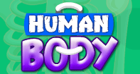 Human Body - The Human Body - First Grade
