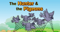 Comprehension - The Hunter and the Pigeons - Reading - First Grade