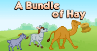 Comprehension - A Bundle of Hay