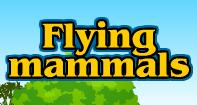 Flying family - Animals - Second Grade