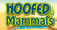 Hoofed Mammals - Animals - Second Grade
