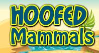 Hoofed Mammals - Animals - Second Grade