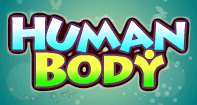 Human Body - The Human Body - Second Grade