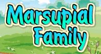 Marsupial Family - Animals - Second Grade