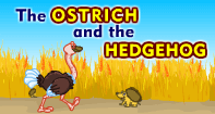 Comprehension - The Ostrich and the Hedgehog - Reading - Second Grade