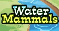 Water Mammals - Animals - Second Grade