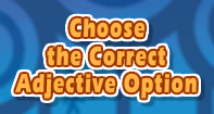 Choose the Correct Adjective Option
