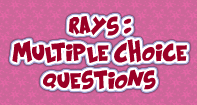 Rays : Multiple Choice Questions - Angles - Third Grade