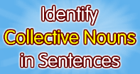 Identify Collective Nouns in Sentences - Noun - Third Grade