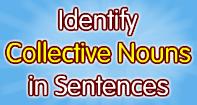 Identify Collective Nouns in Sentences - Noun - Third Grade