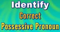 Identify Correct Possessive Pronouns - Pronoun - Third Grade