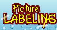 Picture Labeling - Vocabulary - Kindergarten