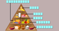 Food Pyramid Labeling - Picture Games - Second Grade