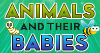 Animals and their Babies - Animals - Preschool