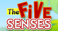 The Five Senses - The Human Body - Preschool