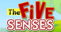 The Five Senses - The Human Body - Preschool