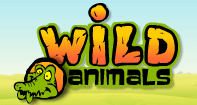 Wild Animals - Animals - Preschool