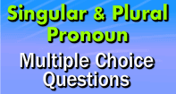 Singular and Plural Pronoun Multiple  Choice Questions - Pronoun - Third Grade
