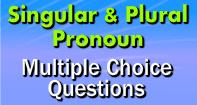 Singular and Plural Pronoun Multiple  Choice Questions - Pronoun - Third Grade