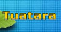 Tuatara - Animals - First Grade