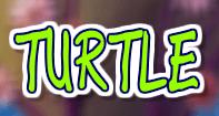 Turtles - Animals - First Grade