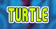 Turtle - Animals - Second Grade