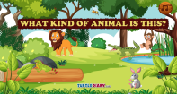 What kind of animal is this - Animals - First Grade