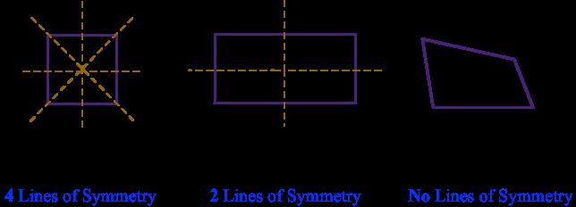 Sym11
