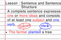 sentence-and-sentence-structure.png