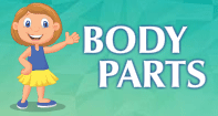Body Parts Video