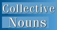 Collective Nouns Video